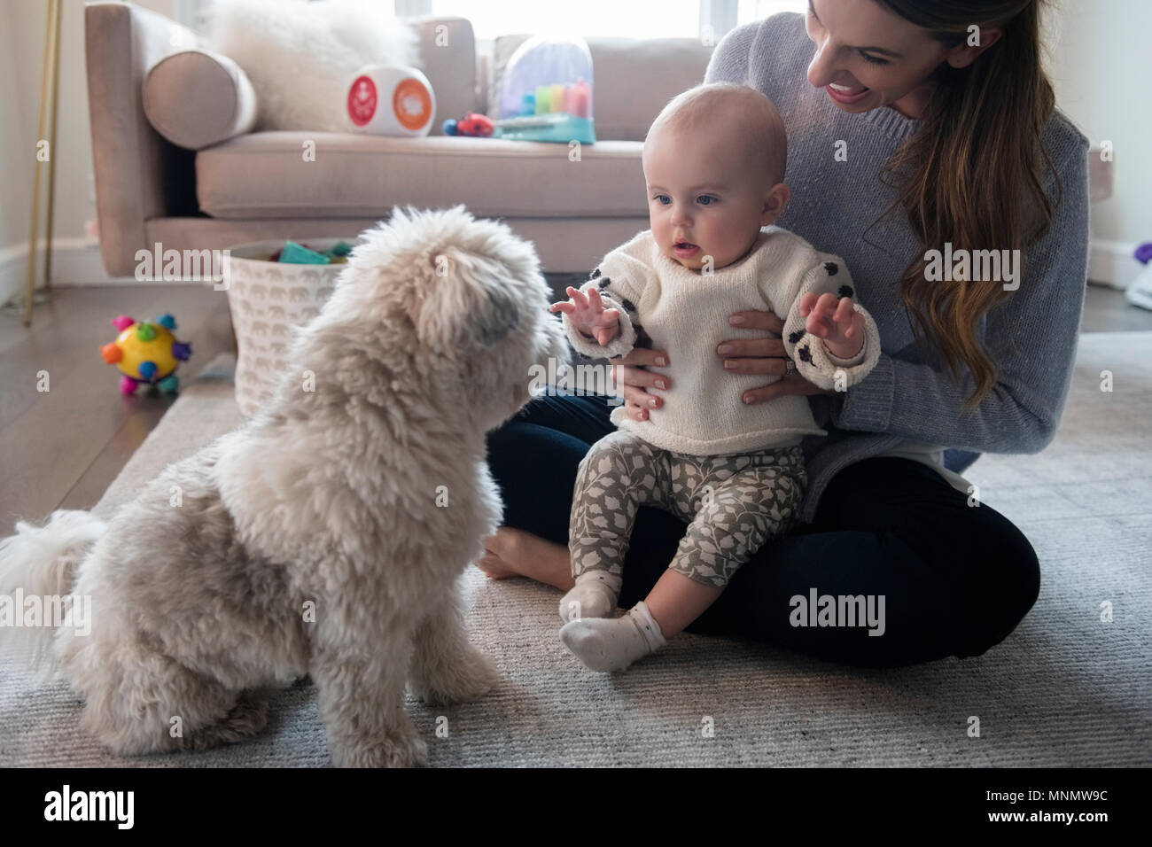 Mother and baby daughter (18-23 months) playing with dog in living room - Stock Image