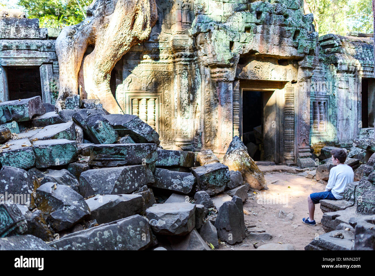 Teenage boy in Ta Prohm jungle temple in Angkor Archaeological area in Cambodia - Stock Image