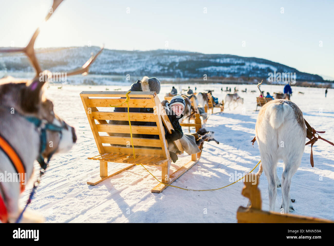 Teenage boy and his family sledding at reindeer safari on sunny winter day in Northern Norway - Stock Image