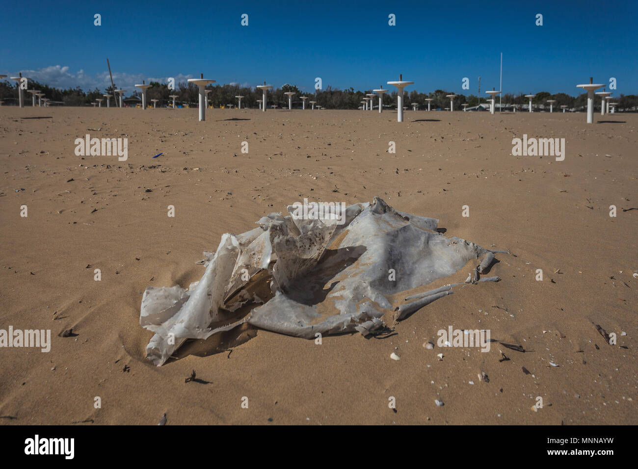 Plastic carried by the sea waves on the beach, Bibione, Veneto, Italy - Stock Image