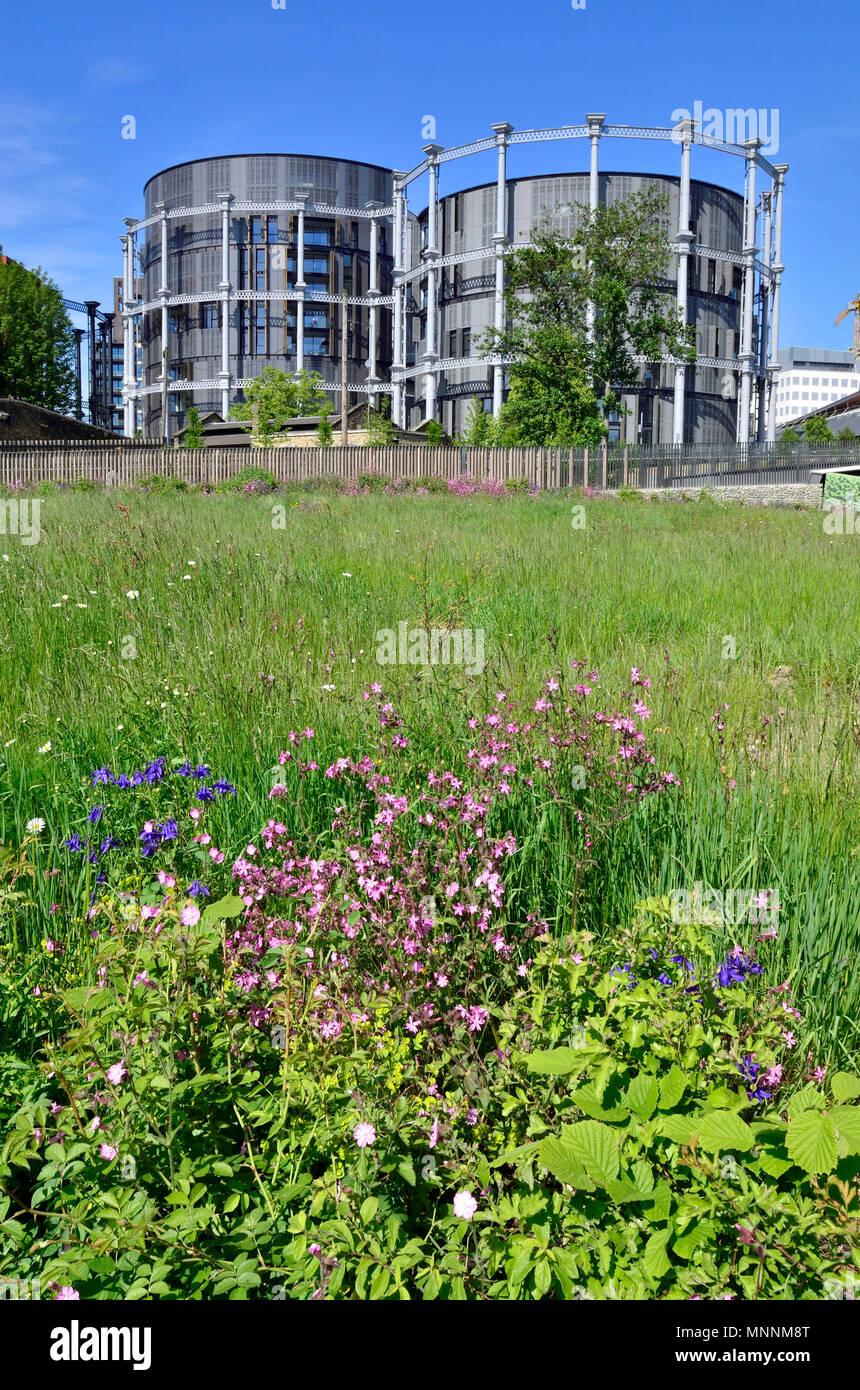 Gasholder Apartments, Lewis Cubitt Square, Kings Cross, London, England, UK. Luxury flats built in Grade II listed gasholders - Stock Image