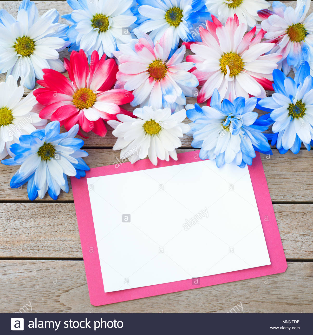 daisy flowers in red white and blue colors with party invitation