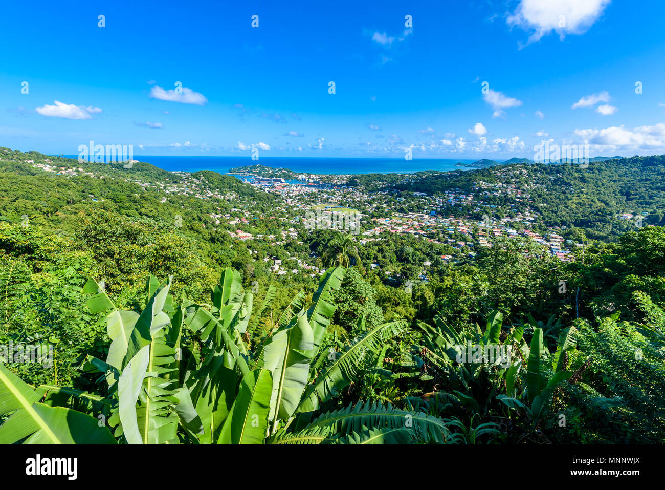 Castries, Saint Lucia - Tropical coast beach on the Caribbean island of St. Lucia. It is a paradise destination with a white sand beach and turquoiuse - Stock Image