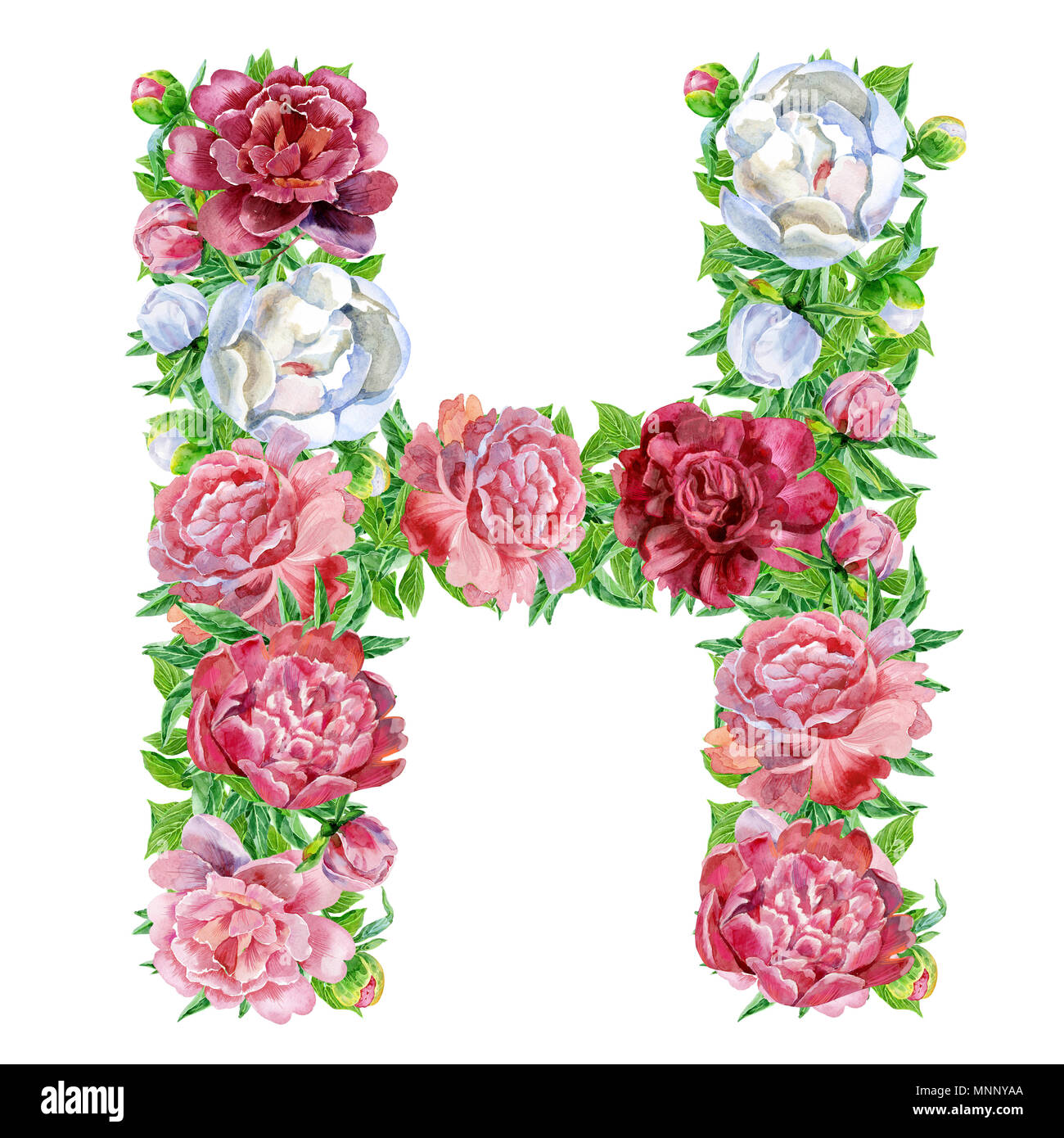 letter h of watercolor flowers isolated hand drawn on a white background wedding design english alphabet