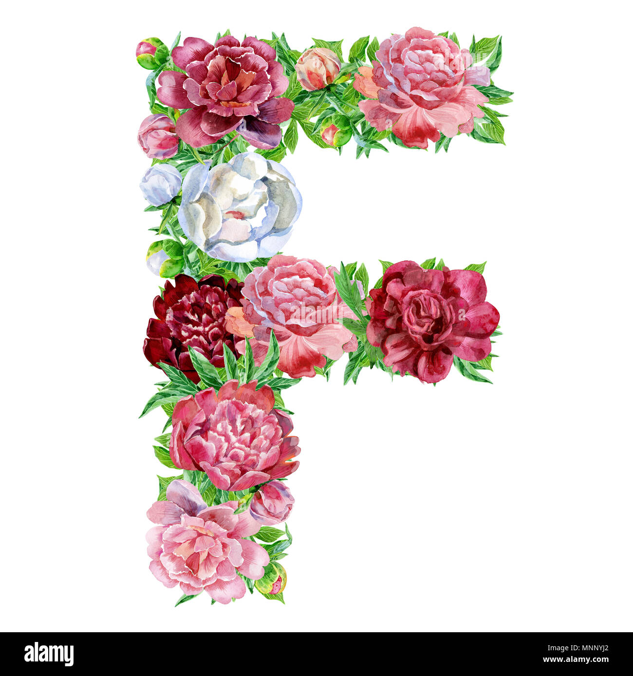 Letter F Of Watercolor Flowers  Isolated Hand Drawn On A