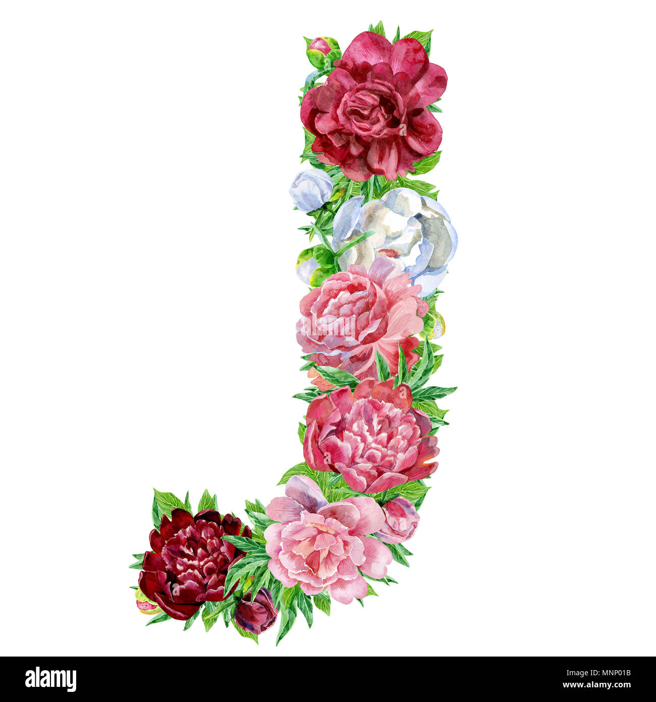 letter j of watercolor flowers isolated hand drawn on a white background wedding design english alphabet