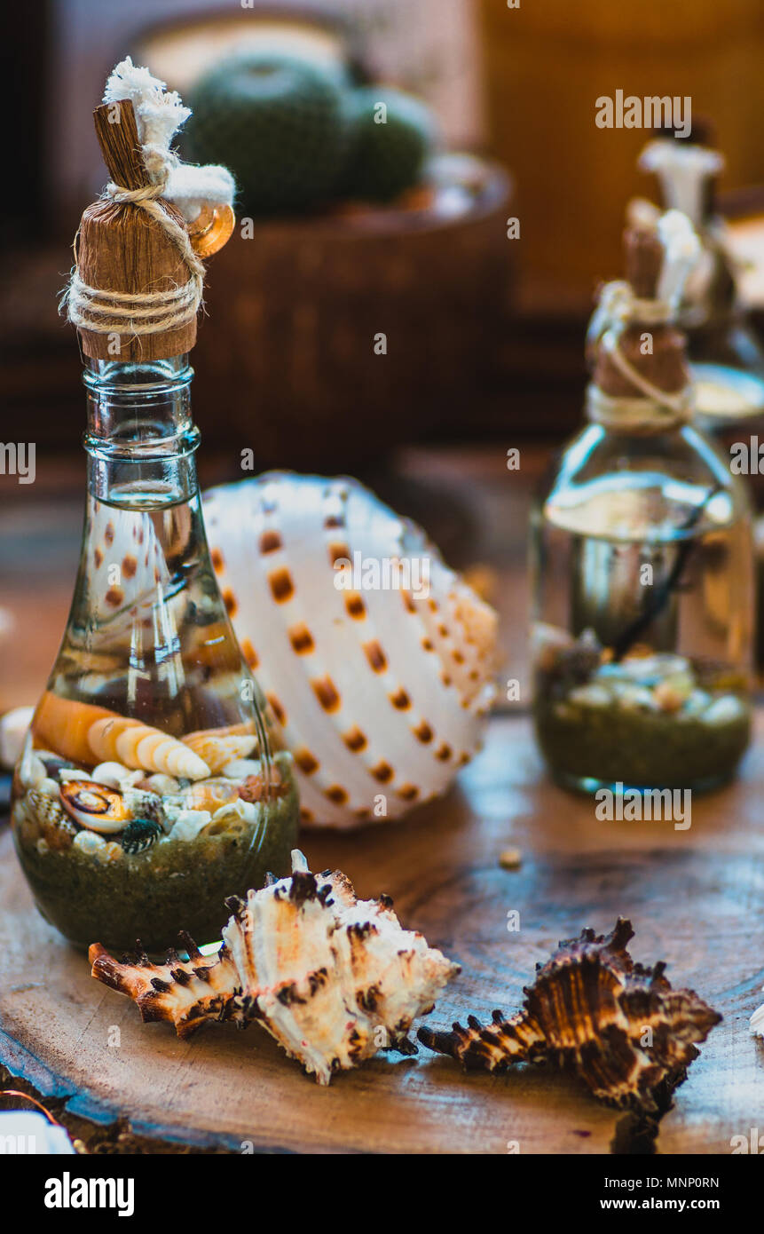 Colorful seashells inside little flasks displayed on a wooden plate - Stock Image