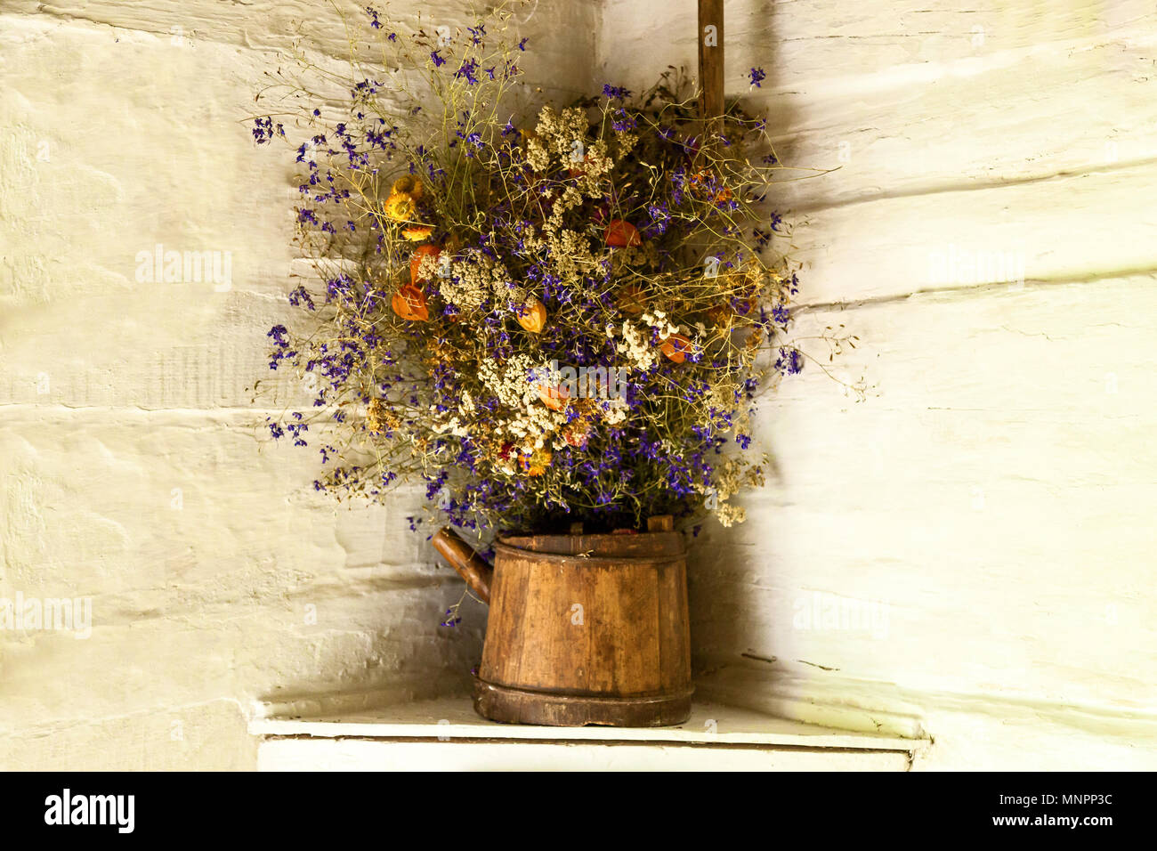 Still life of dried flowers on white wall background bouquet of still life of dried flowers on white wall background bouquet of wild flowers in niche of old stone walluquet of dry wild flowers in a pot mightylinksfo