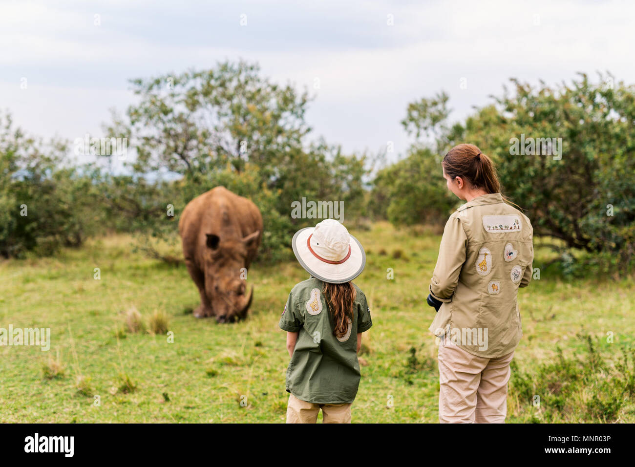 Back view of family on safari walking close to  white rhino - Stock Image