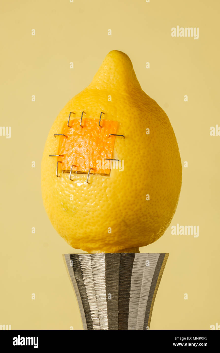 yellow lemon with sutures stands on an iron candlestick displaying food manipulation concept - Stock Image
