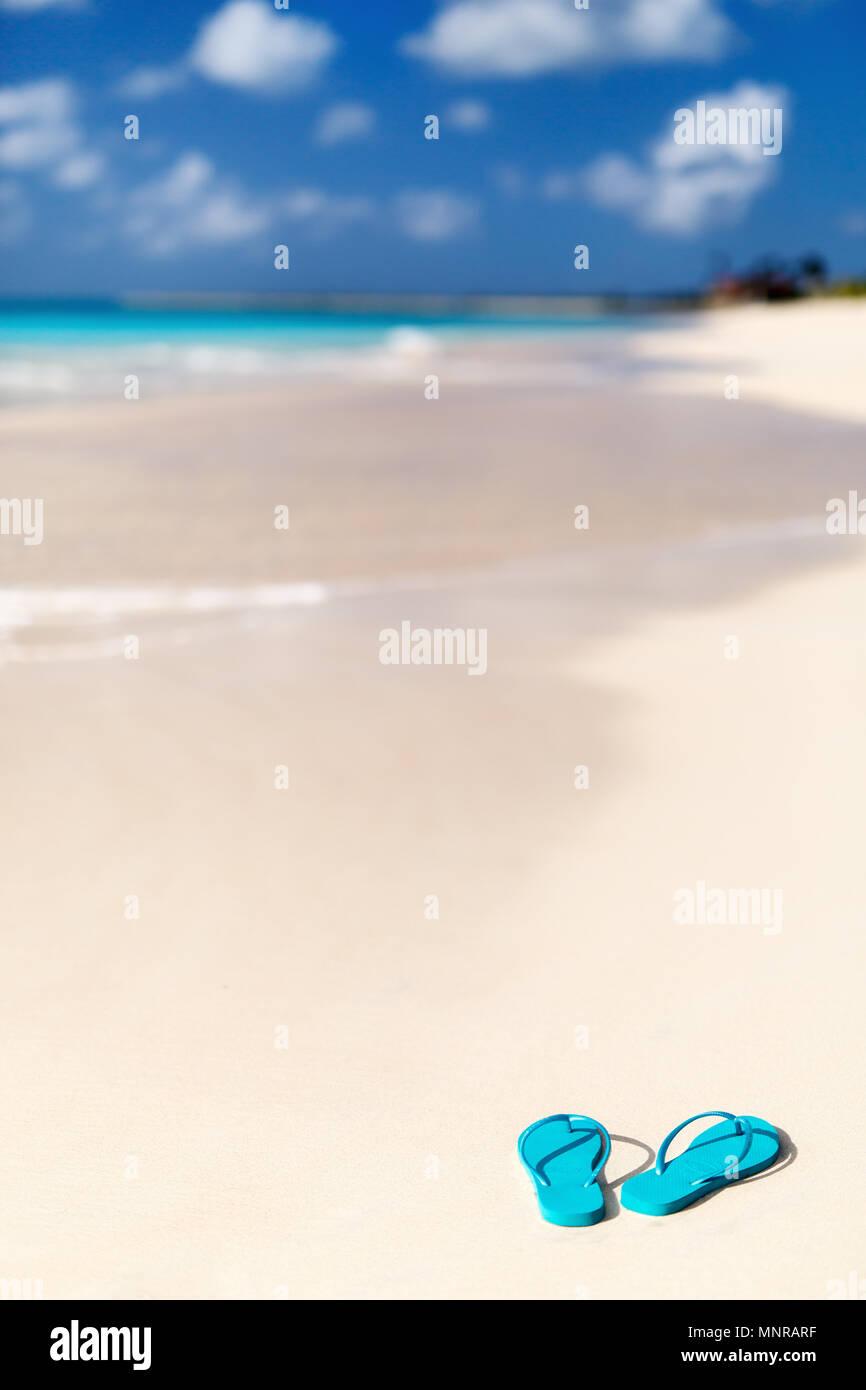 eeba9b8d02c4 Turquoise flip flops on a tropical beach Stock Photo  185524851 - Alamy