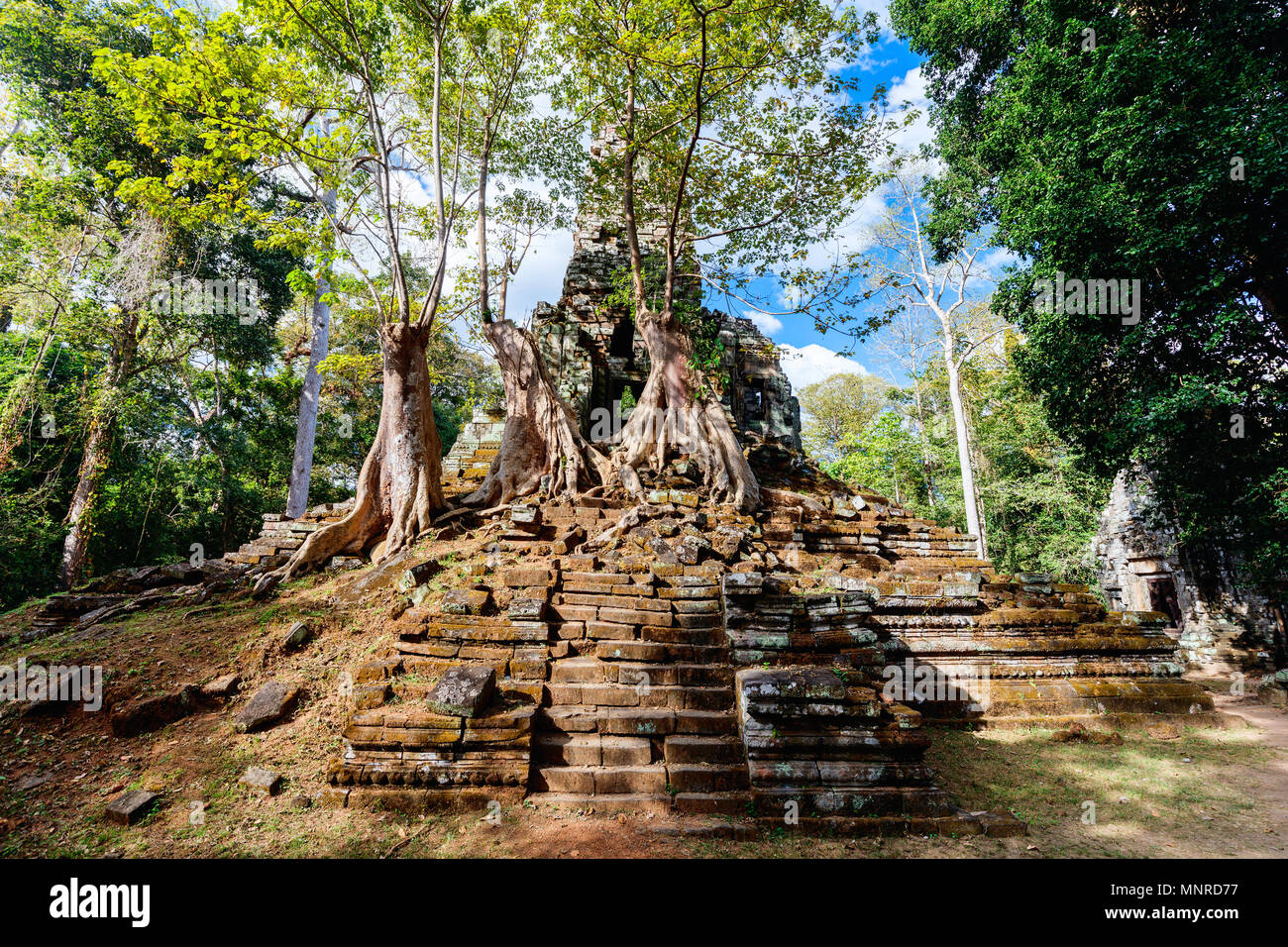 Secluded  Preah Palilay temple in Angkor Archaeological area in Cambodia - Stock Image