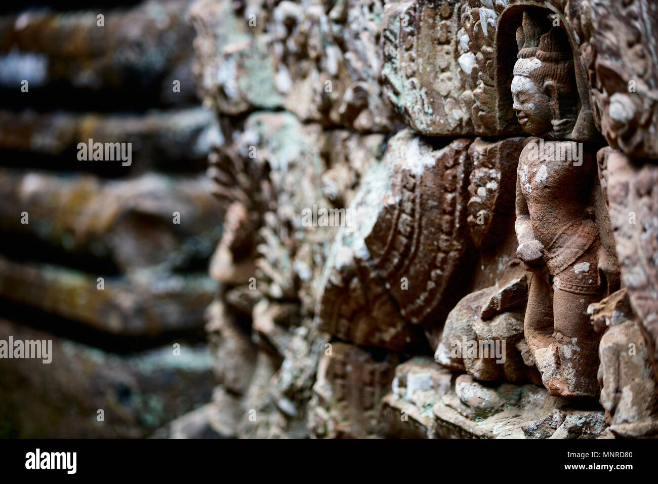 Bas reliefs in Angkor Archeological area in Cambodia - Stock Image