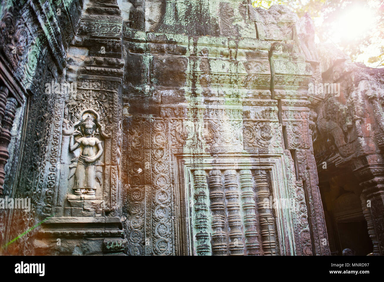 Bas reliefs in Ta Prohm in Angkor Archaeological area in Cambodia - Stock Image