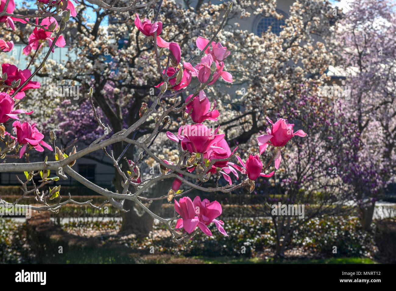 Ny Botanical Garden Sign Stock Photos & Ny Botanical Garden