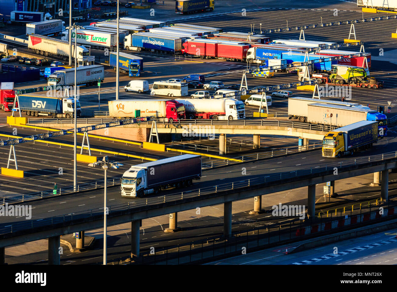 England, Dover harbour. HGVs and trucks heading towards passport control, driving along port roads after disembarking from ferry. Golden Hour. Stock Photo