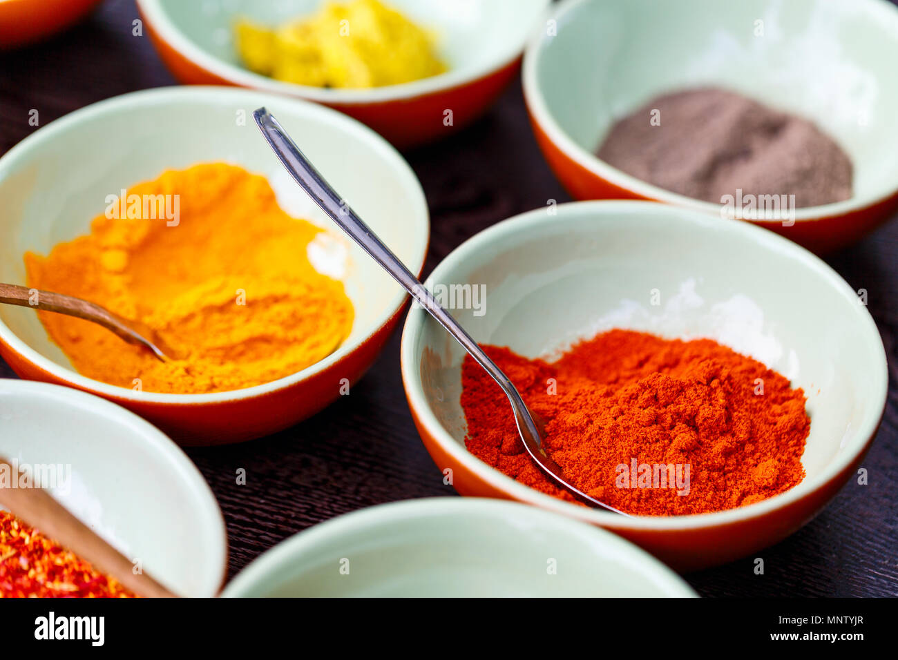 Spices cooking ingredients for making curry - Stock Image
