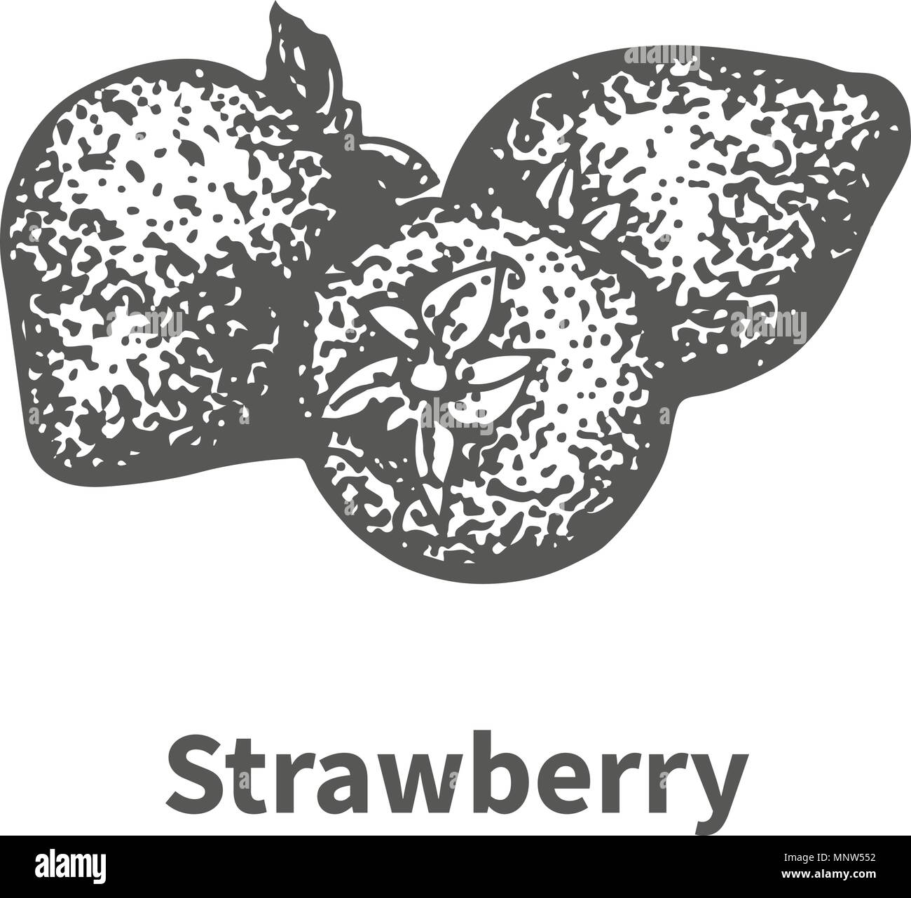 Vector illustration hand-drawn strawberry - Stock Image