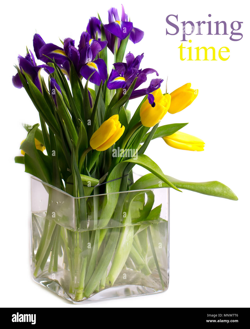 Bright Bouquet Of Spring Flowers In The Large Square Vase Stock