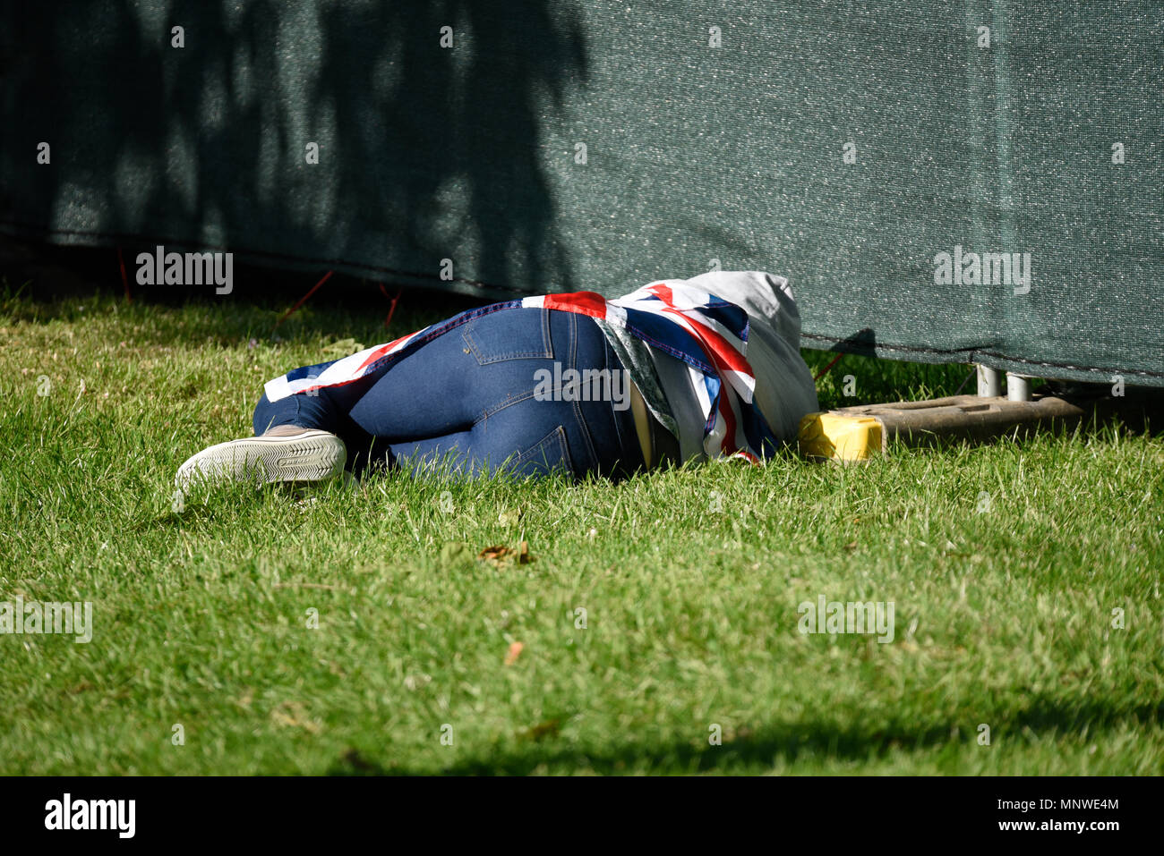 The Royal Wedding of Prince Harry and Meghan Markle at Windsor. A member of the public relaxes after the long wait in Windsor Great Park by The Long Walk - Stock Image