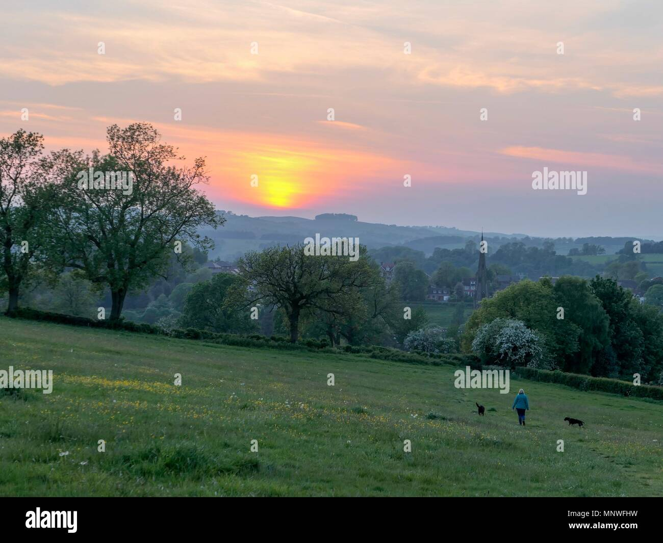 Derbyshire, UK. 19th May 2018. UK Weather: Woman's walking her dogs into a wonderful sunset over Ashbourne, Derbyshire, the gateway to the Peak District National Park Credit: Doug Blane/Alamy Live NewsStock Photo