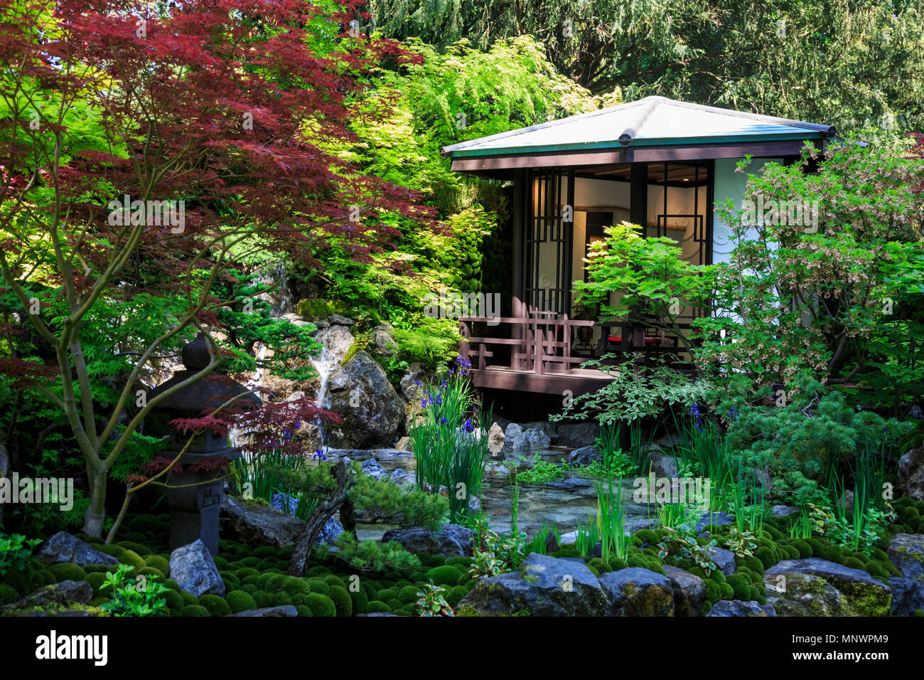London, UK. 20 May 2018. The O-mo-te-na-shi no NIWA - The Hospitality Garden created by Kazuyuki Ishihara. Preparations are well under way for the start of the Chelsea Flower Show. Photo: Bettina Strenske/Alamy Live News - Stock Image