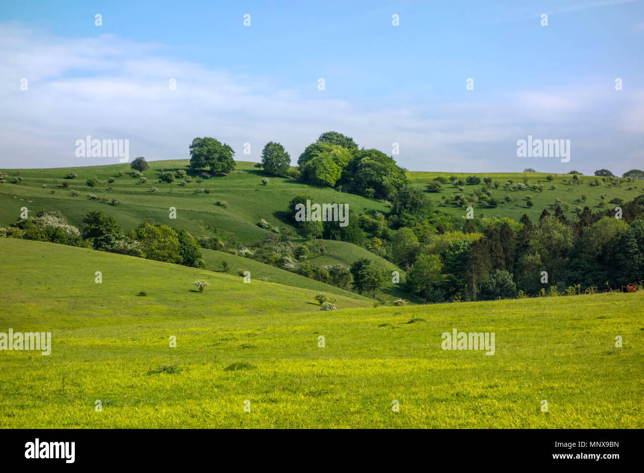 Pegsdon Hills and Hoo Bit, nature reserve in Pegsdon, Bedfordshire in the Chilterns Area of Outstanding Natural Beauty Stock Photo
