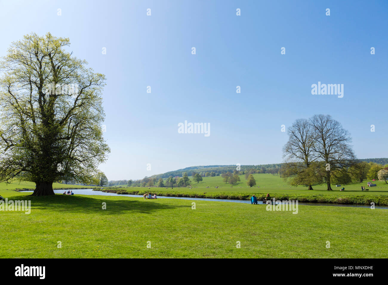 People picnicking on the banks of the River Derwent in Chatsworth Park, Derbyshire, England, UK - Stock Image