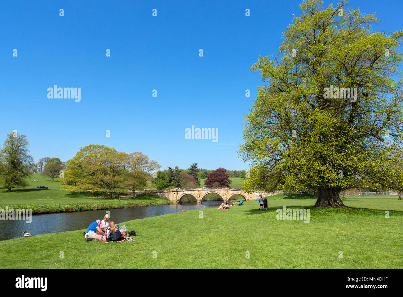 Family picnicking on the banks of the River Derwent in Chatsworth Park, Derbyshire, England, UK - Stock Image