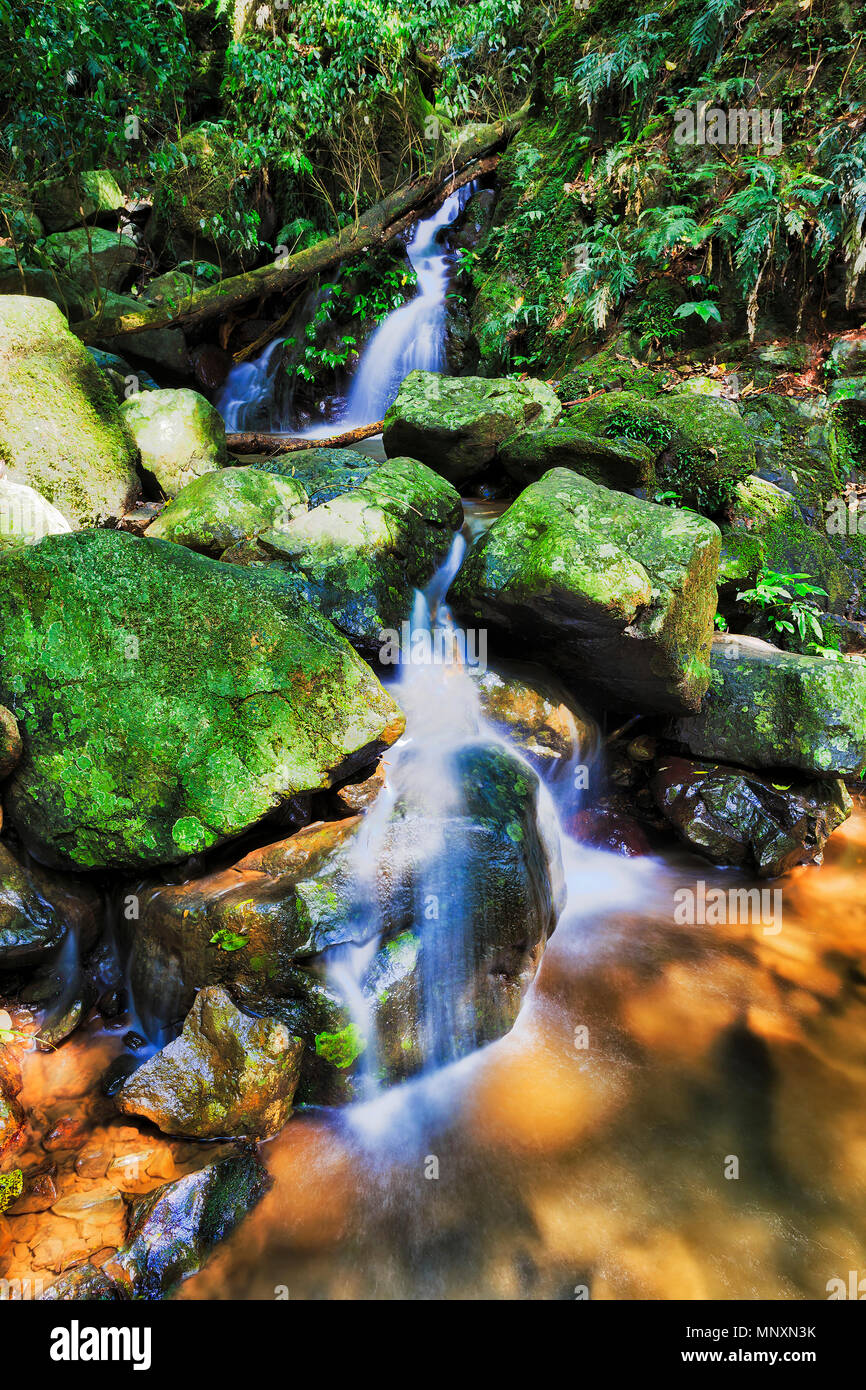 Small waterfall in Dorrigo national park along the track to Crystal shower fall. Ancient gondwana rainforest on a sunny summer day. - Stock Image