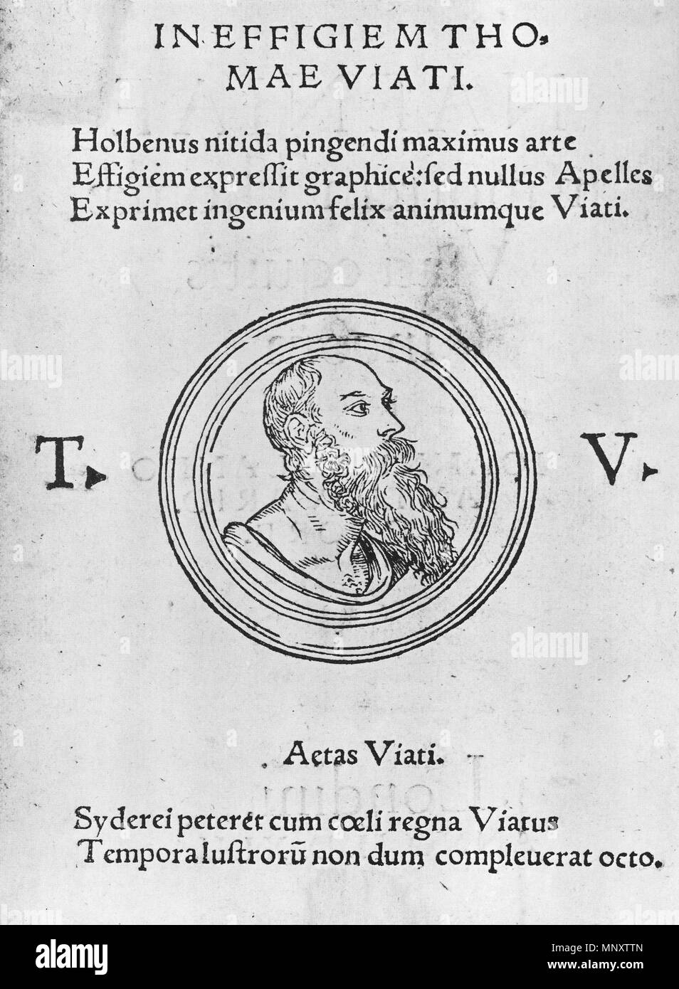 . English: Profile of Sir Thomas Wyatt wearing an antique drape. Woodcut published in John Leland's Naenia in 1548. This woodcut was probably based on a lost Holbein drawing or painting of Wyatt from around 1540. Holbein had already drawn Wyatt in the mid 1530s wearing a hat. Here he is shown balding. Four copies of the lost work, by other hands, survive (see 'Other versions' below for two). Sir Thomas Wyatt (1503?–42) was a diplomat and a gifted poet who introduced the Italian sonnet form to England. He was arrested after the fall of Anne Boleyn, whom he had admired in poetry, but he recovere - Stock Image