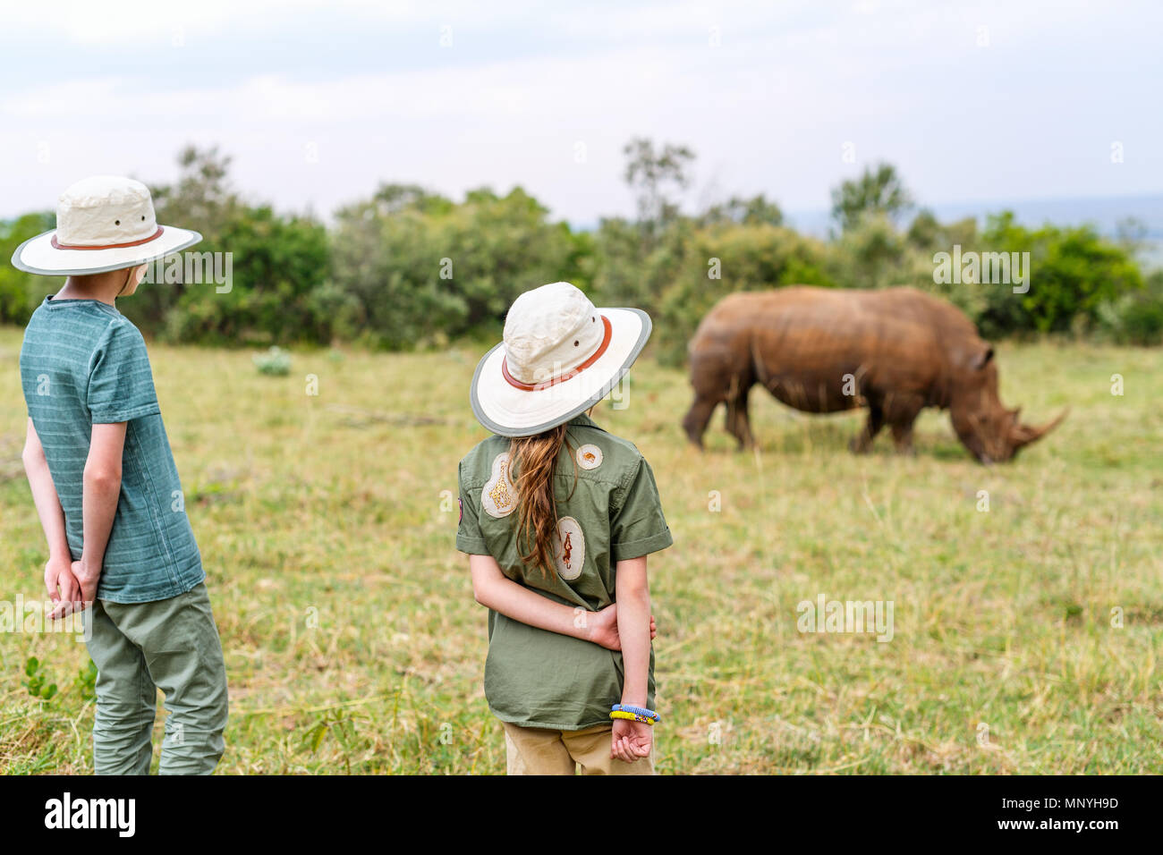 Back view of kids on safari walking close to  white rhino - Stock Image
