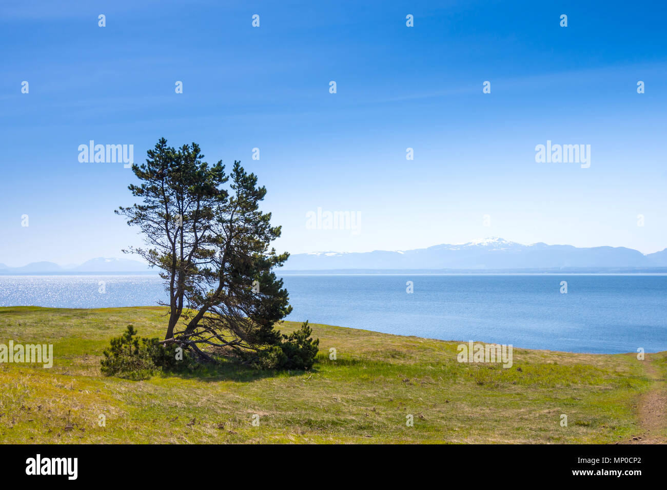 Coastline, Helliwell Provincial Park, Hornby Island, BC, Canada. - Stock Image