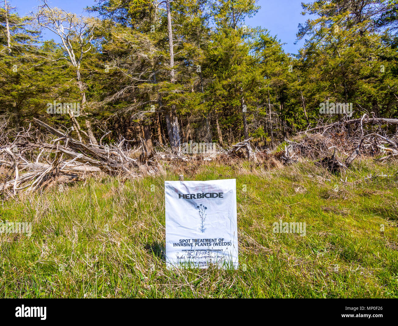 Herbicide warning notice on sprayed weeds, Helliwell Provincial Park, Hornby Island, BC, Canada. - Stock Image