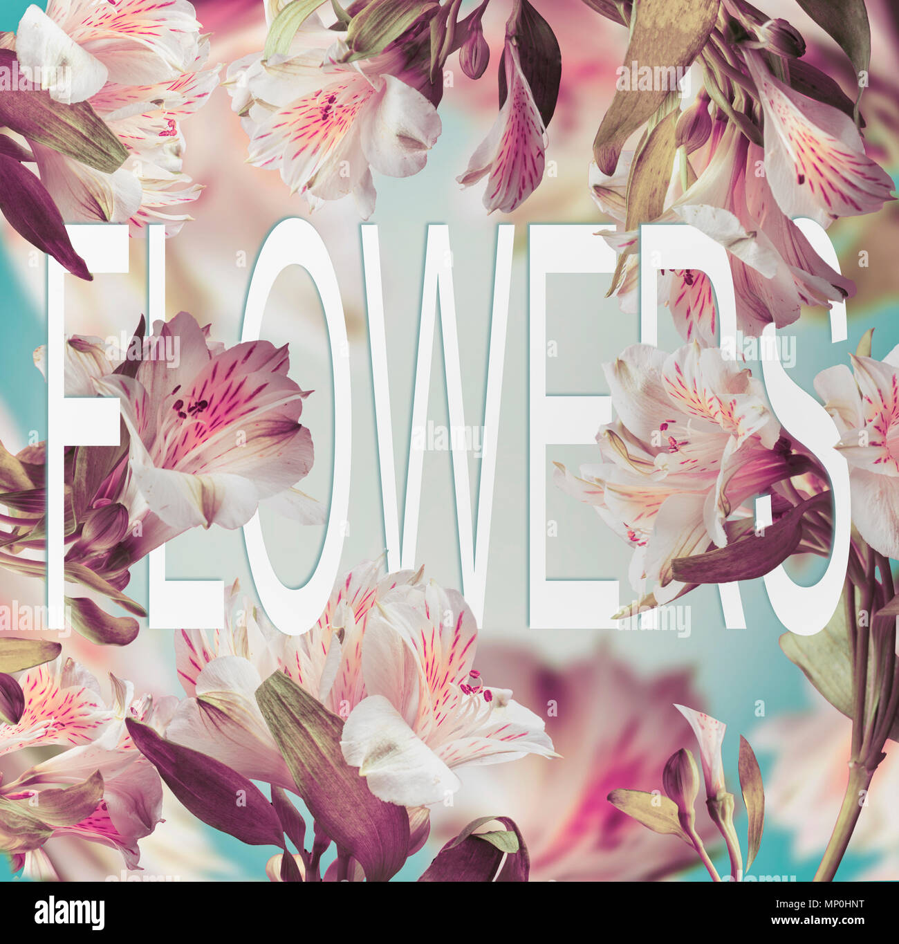 Word flowers made of paper on floral background with various flying word flowers made of paper on floral background with various flying flowers creative layout with text mightylinksfo