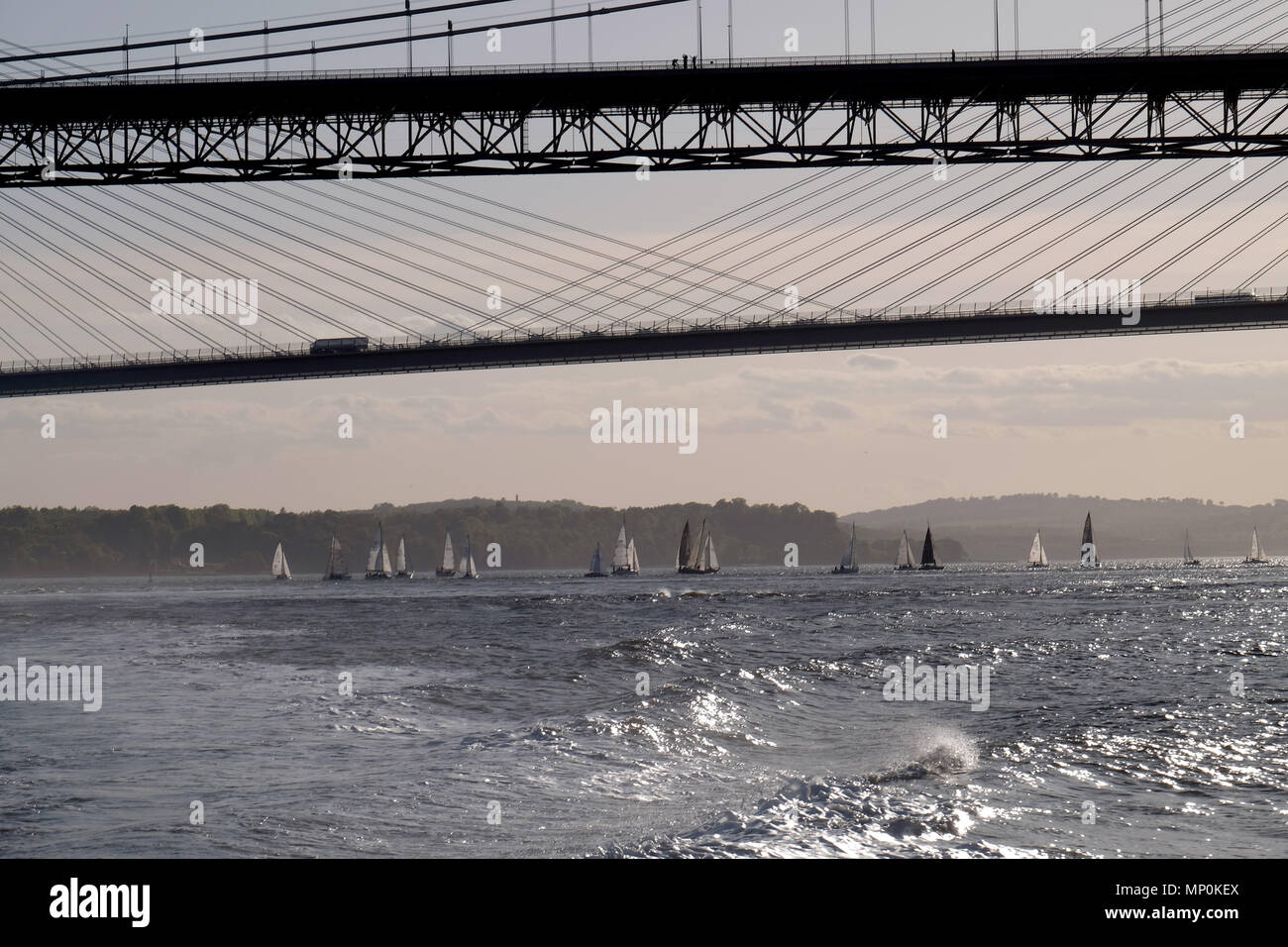 sail yachts on the River Forth below the bridges at sunset - Stock Image
