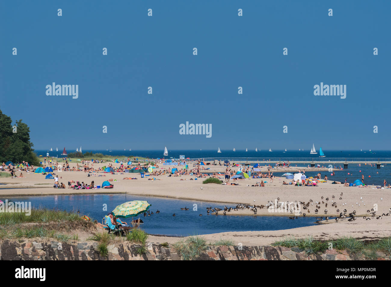 Relaxing on a hot summer day at the beach 'Falkensteiner Strand', Kiel Fjord, Kiel, Germany, - Stock Image