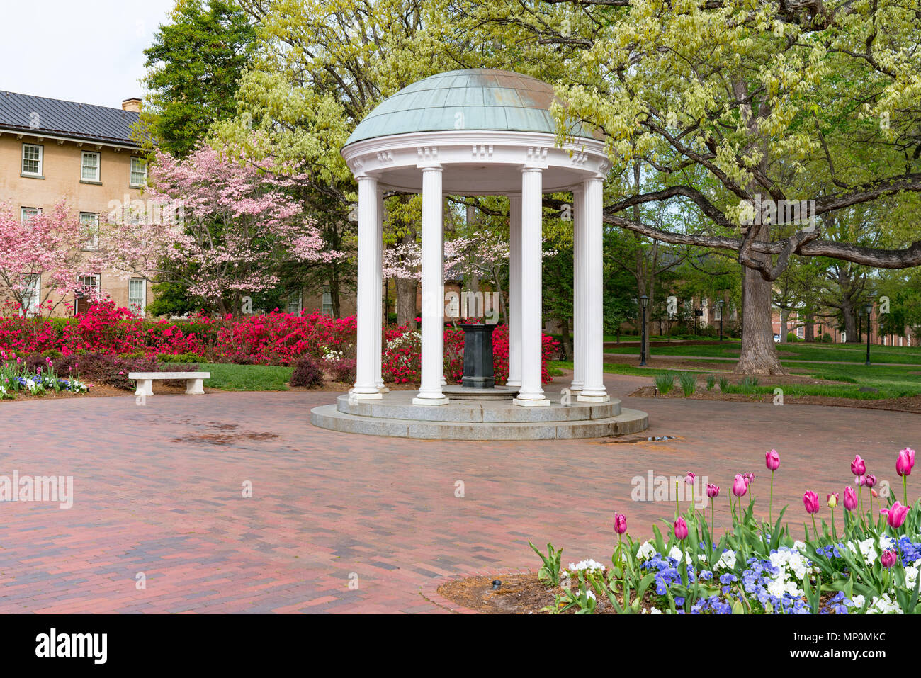 Flowers Bloom in Spring at the Old Well Rotunda at University of North Carolina in Chapel Hill Stock Photo