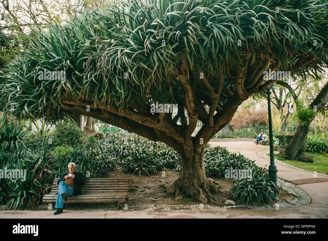 Lisbon, Portugal 01 may 2018: lonely people in garden under trees. Lonely man waits his woman and wait for acquaintance. Loneliness and a privacy in g - Stock Image