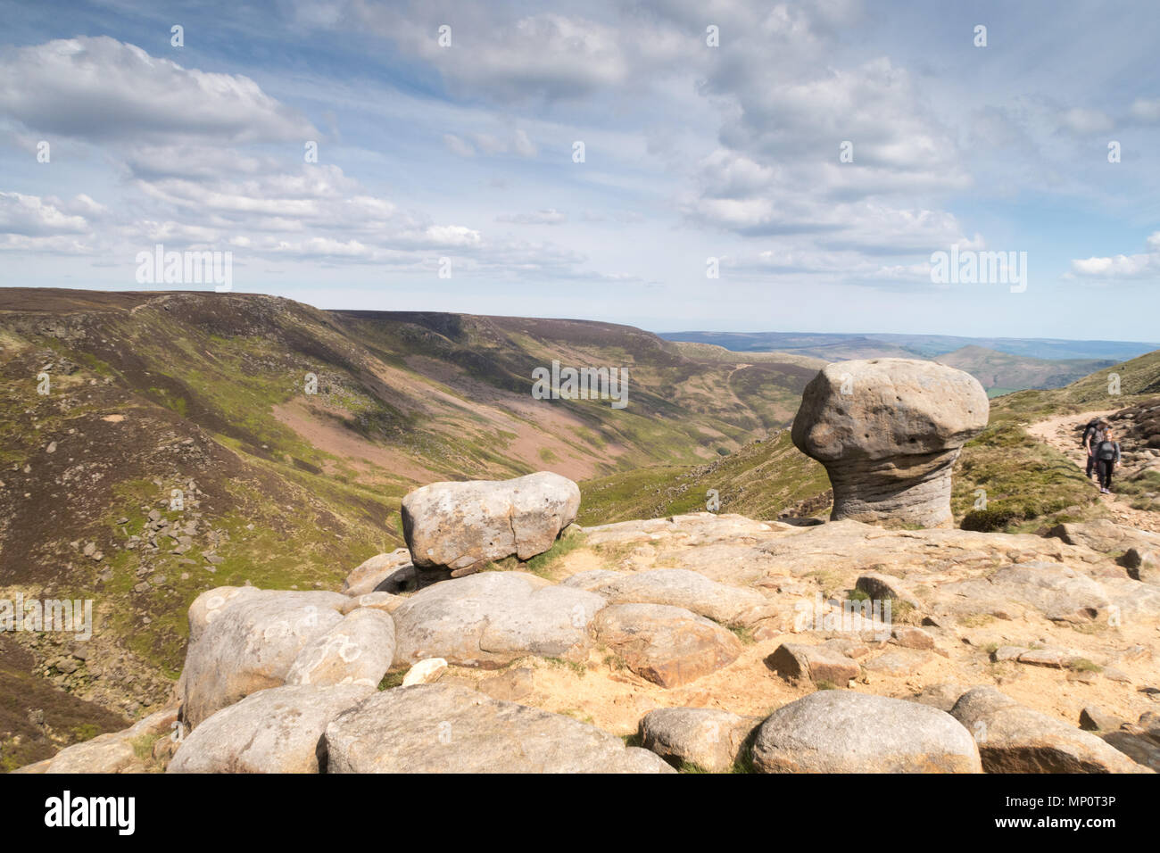 Overlooking the valley of Grindsbrook Clough above Edale in the Peak District - Stock Image