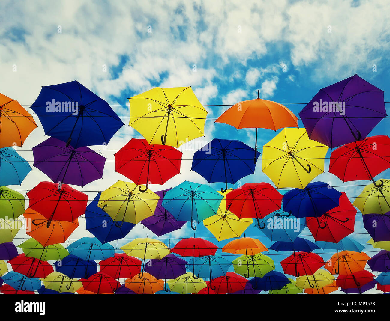 a53dad035 Colorful umbrellas hanging above a city street isolated on blue sky  background. Bright urban decoration.