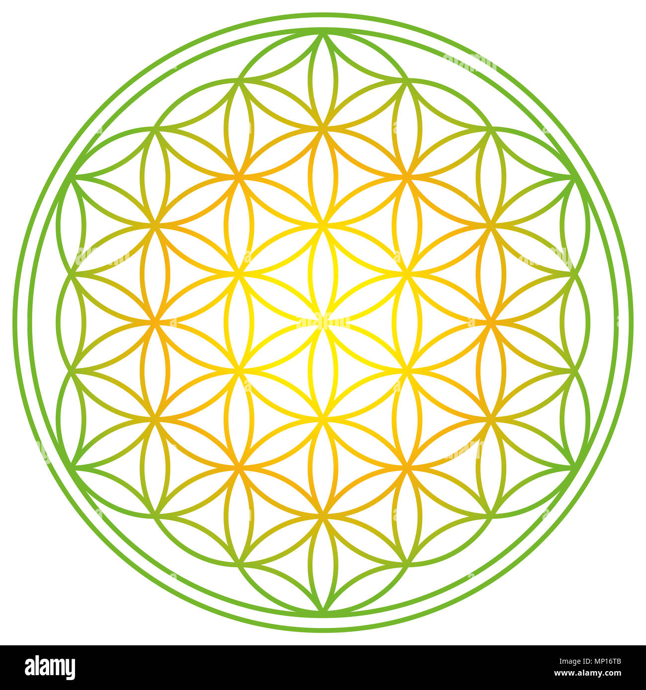 Flower Of Life With Spring Energy Colors Geometrical Figure