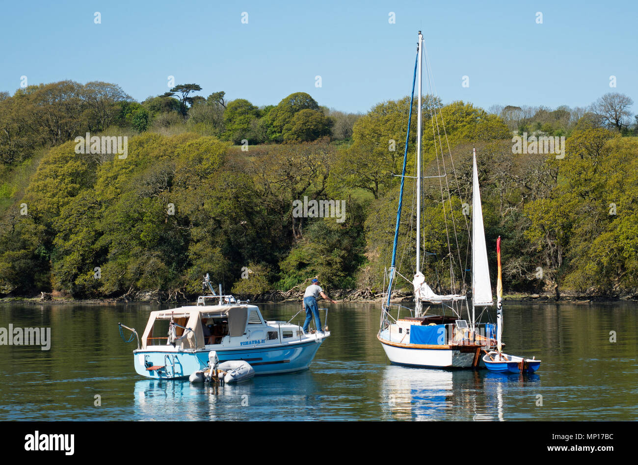 boats in a creek, helford river, cornwall, england, britain, uk, - Stock Image