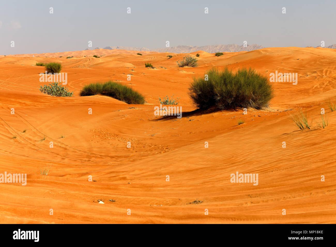 Dubai. Stock Photo