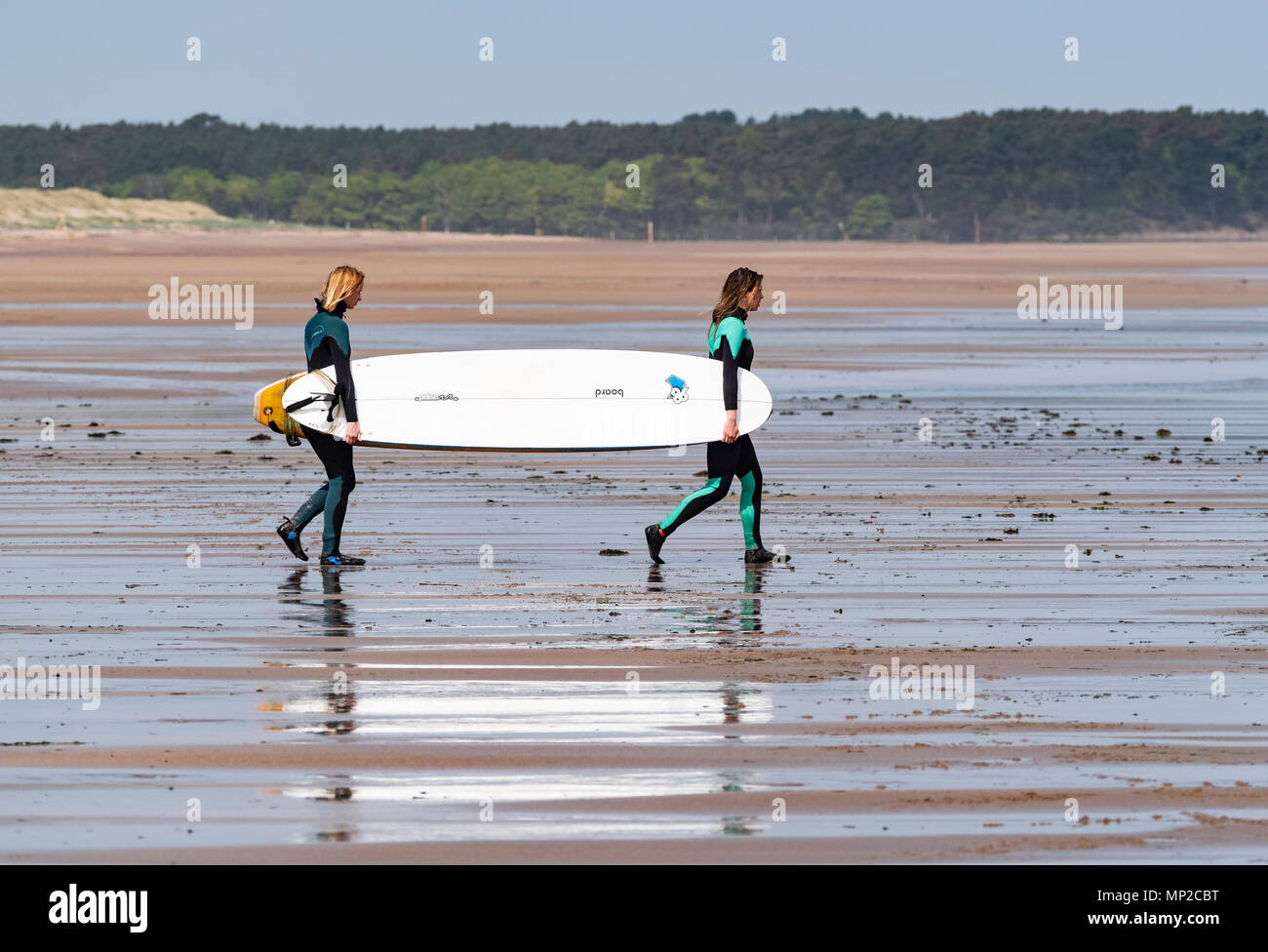 Two female surfers carry surfboards to sea at Belhaven Beach, East Lothian, Scotland, United Kingdom - Stock Image