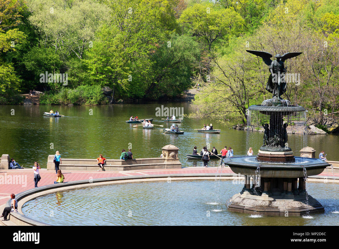 People rowing boats on the boating lake, Central Park, New York city USA - Stock Image