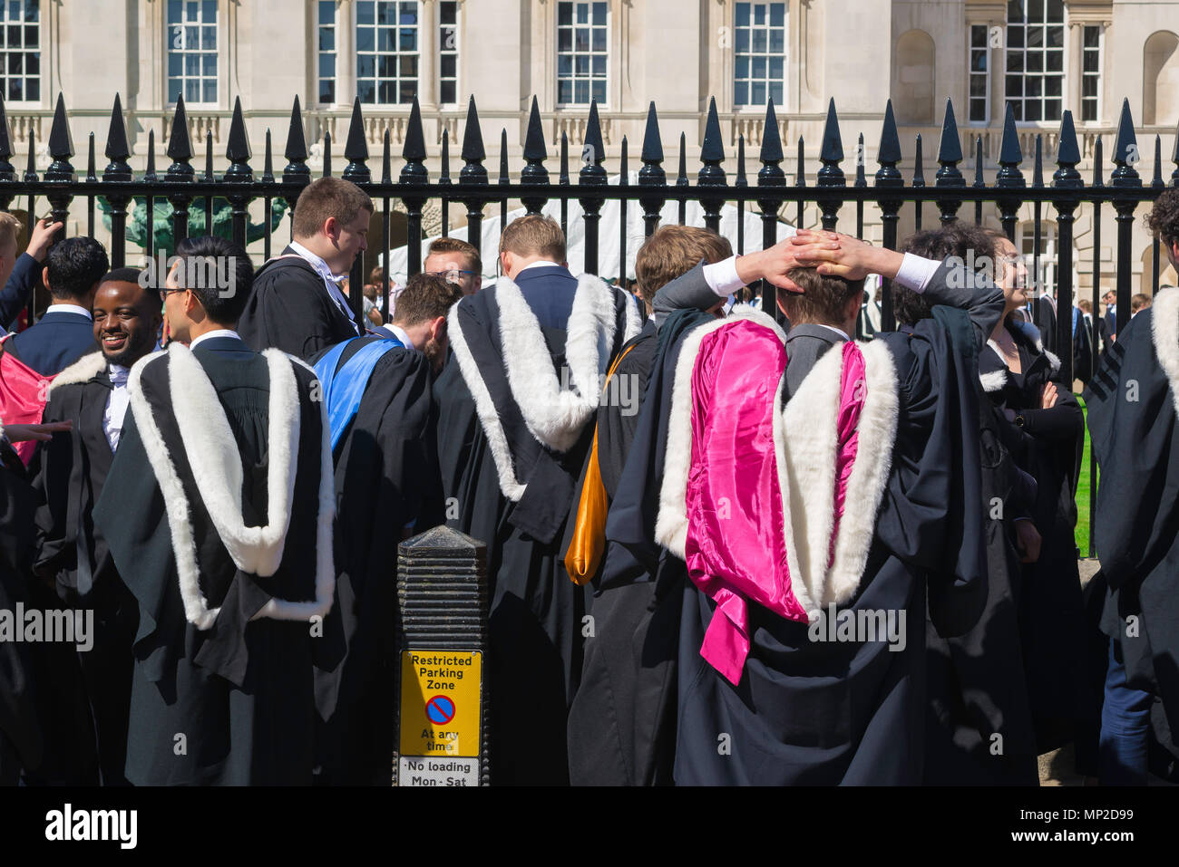 On graduation day Cambridge undergraduate students wear ceremonial gowns whose colorful hoods identify the college they have attended, England, UK. - Stock Image