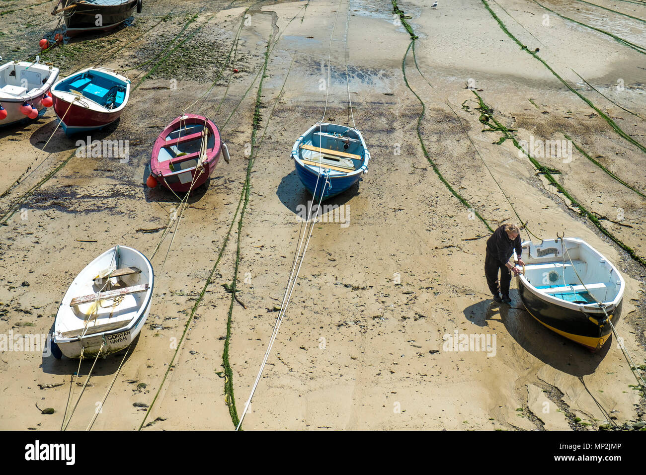 Dinghies tied up at low tide in Mousehole Harbour in Cornwall. - Stock Image