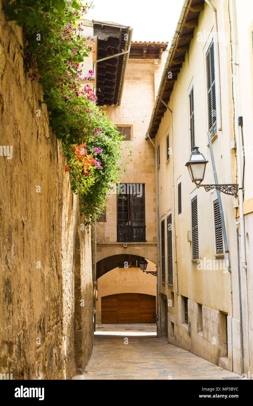 Old buildings in the historical center of Palma de Mallorca - Stock Image
