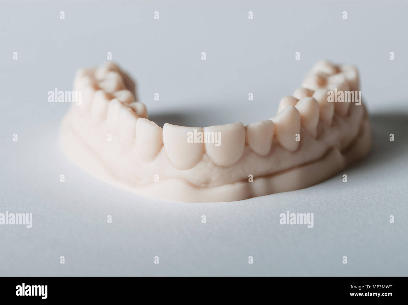 Dental and Orthodontic 3D Teeth Model - Stock Image